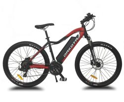Dakota Urbanbiker E-Bike Mountainbike